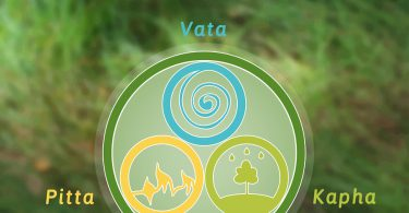 vata diet and lifestyle