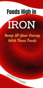 foods high in iron
