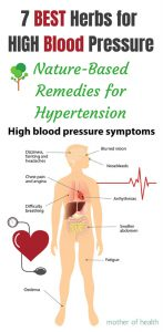 best herbs for high blood pressure