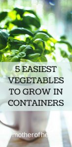 easiest vegetables to grow in containers