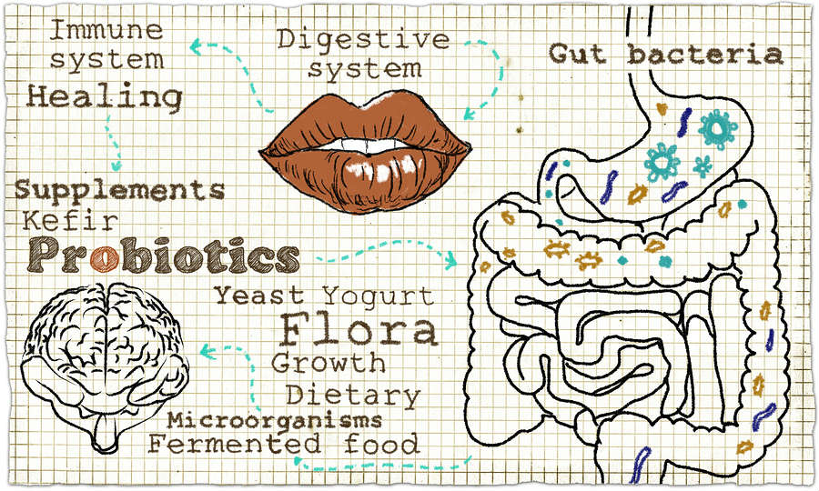 how to improve digestive health