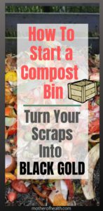 how to start a compost bin