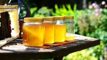 benefits of pure raw honey