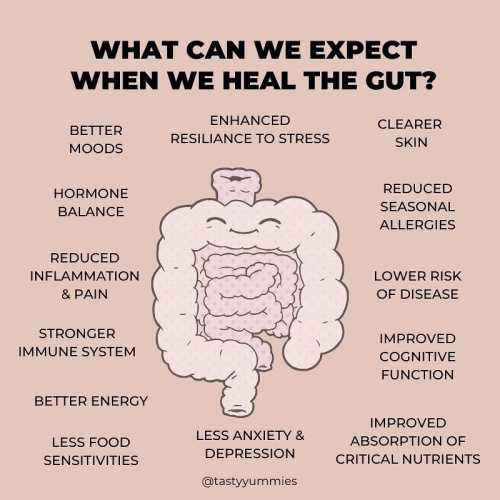 Why is gut health so important?, gut health